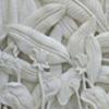relief-batu-alam
